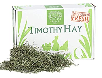 Small Pet Select 2nd Cutting Timothy Hay Pet Food 10-Pound