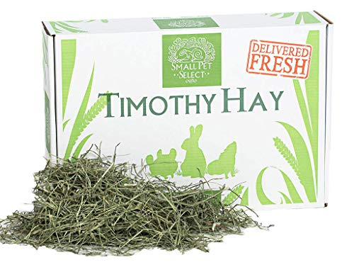 Small Pet Select 2nd Cutting Timothy Hay