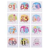 Kisangel 1 Juego de Calcomanías para Bebés Y Meses 12 Calcomanías Mensuales para Animales Pegatinas para Bebés Primer Año Mes a Mes Accesorios para Fotos para Bebés Recién Nacidos
