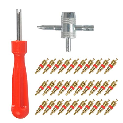 YANSHON 32pz Removedor de válvula - Eje de llave acero para válvulas, Válvula neumática de núcleo, Herramienta de reparación acero 4-1, Desenrosque las válvulas neumáticas(Solo para valvula americana)