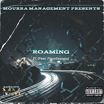 Roaming (feat. Flacoyoungin)
