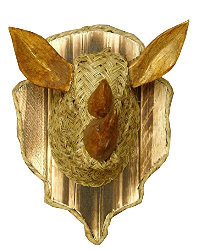 Trofeo rinoceronte - BicocaWeb