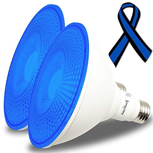 AmeriLuck 2-Pack Cobalt Blue Color PAR38 LED Flood Light Bulb, 13W, Waterproof for Outdoor Use