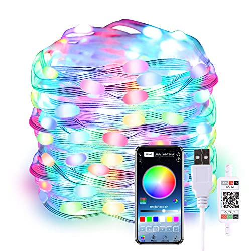 ECOWHO LED Fairy Lights, 33ft 100 LEDs Color Changing String Lights with Timer USB Smart Fairy Lights Waterproof APP Control Christmas Twinkle Lights for Bedroom, Home, Outdoor & Indoor Decoration