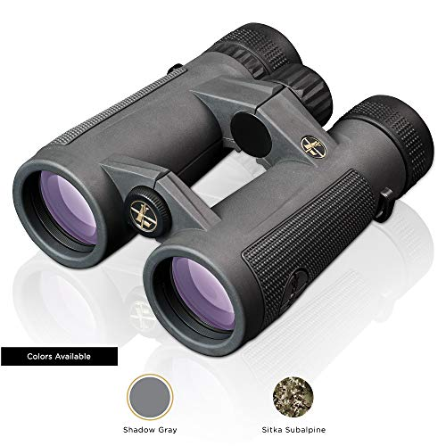 Leupold BX-5 Santiam HD 10x42mm Binoculars, Shadow Gray (174483)