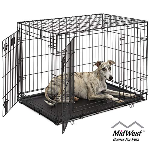 Dog Crate 1636DDU| MidWest Life Stages 36' Double Door Folding Metal Dog Crate | Divider Panel, Floor Protecting Feet, Leak-Proof Dog Tray | 36L x 24W x 27H Inches, Intermediate Dog Breed