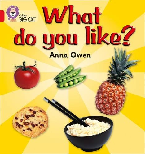 What Do You Like?: A non-fiction recount answering the...