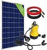 ECO-WORTHY Kit de bomba solar de pozo solar bomba de agua para riego de ganado, riego, batería solar, kit de bomba de pozo
