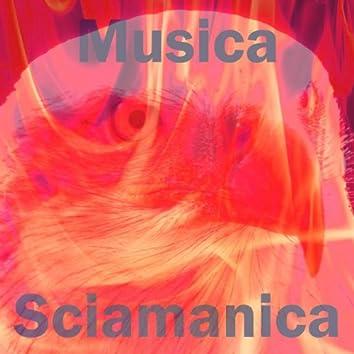 Musica sciamanica