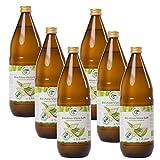 Bio Aloe Vera Saft 6 x 1l
