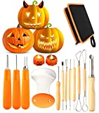 12 Pieces Professional Pumpkin Carving Tool Kit Heavy Duty Stainless Steel Tool Set with Storage...