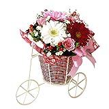 翌日配達お花屋さん キュート&スィート!かわいい人へのプレゼントにぴったり!メロディ(季節の花ガーベラアレンジメント)