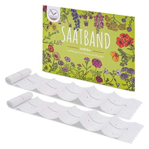2X Saatteppich Blumensamen Balkonkasten Mischung - Farbenfrohe Blumen mit Langer Blütezeit ideal für Ihren Balkon, Garten & Blumenwiese