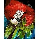 AGjDF Pared de Cabeza de loroDIY Pintura de por números_Pintura de Lienzo Kits de Pinceles para la Imagen del Arte de la Pared_40x50cm