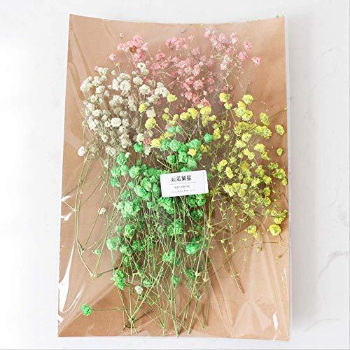 Getrocknete Blumen Materialpaket Unsterbliche Blume Handgemachte DIY Kopfschmuck Krone 11