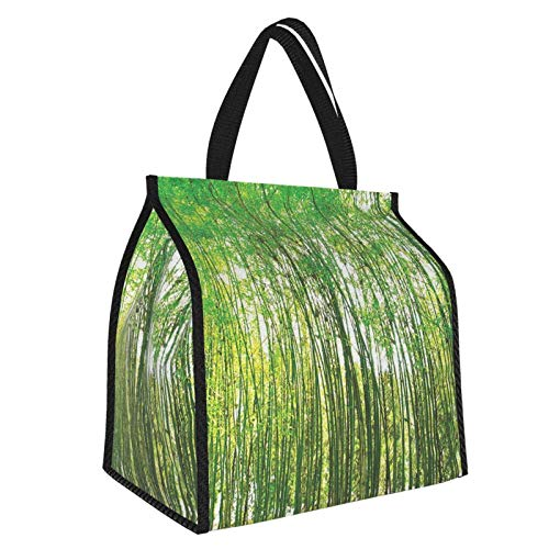 Y-shop Bamboo Trees Decotaions Collection Natural Bamboo Forest Botanical Garden Photography Print Picnic Freezer Bag,Large Insulated Cooler Bag Picnic Camping Beach Tour BBQ 30l