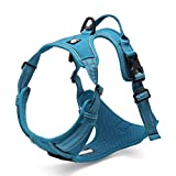 Chai's Choice Best Outdoor Adventure Dog Harness (Teal Blue Large)