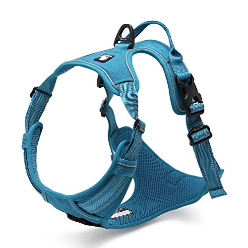 Chai's Choice Best Outdoor Adventure Dog Harness (Teal Blue X-Large)