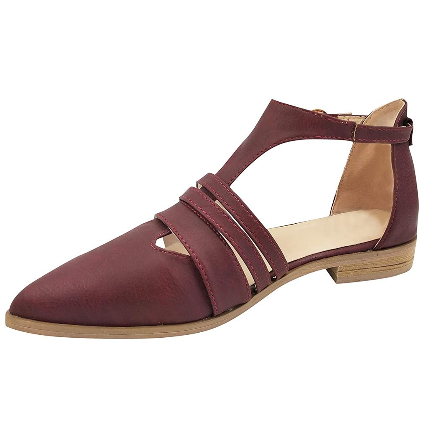 Duseedik Women's Hollow Out Sandals Rome Solid Colors Pointed Toe Low Heel Ankle Buckle Strap Shoes