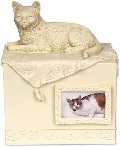 Angel Star Cristo Pet Box Urna Gatto Amato Compagno, Metallo, Multicolore