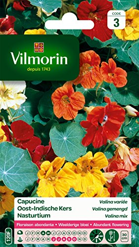 Vilmorin 5191343 Pack de Graines Capucine Valina Variée