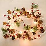 Luz de la secuencia de la batería motor llevó fruta roja artificial rota cuelga luces de hadas de Navidad festiva Ventana Decoración del dormitorio