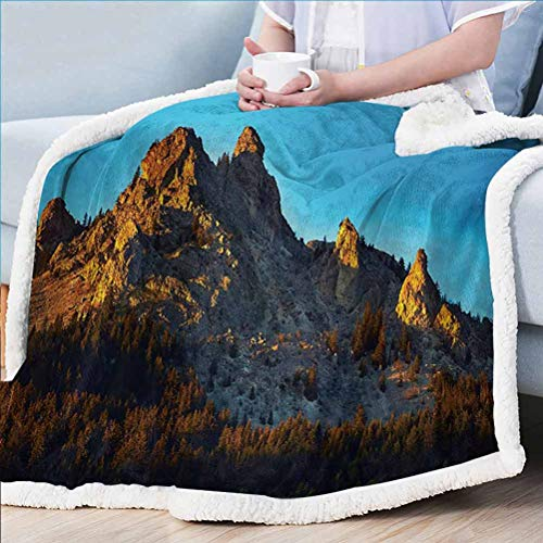 ParadiseDecor Mountain Sherpa Fleece Blanket Custom Blankets Mountain with Pine Trees Forest in Summertime Sunlights on Rocks Illustration Multicolor 60W x 80L inches