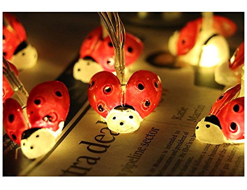 LJM 20 Led Battery Operated Lovely String Lights for Indoor Outdoor Decoration for Baby Boy Girl Birthday (Lady Bug)