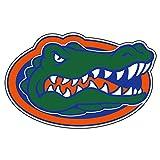 Craftique University of Florida Decals (Gator (3 in, 4 in, 6 in, 12 in, 18 in), 6 in)