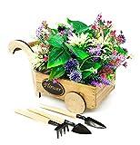 Set Macetero Jardinera para Flores o Cactus Estilo Carretilla o Triciclo Decorativo + Kit de 3 Herramientas de Jardinero pequeñas (sin Flores)(Macetero Flower Carrito)