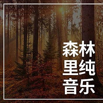 森林里纯音乐: 失眠时听的浪漫安静歌曲为了休息和深度睡觉