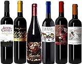 Bodegas Cañaveras Degustación Especial Vinos Tintos - Lote de 6 botellas...