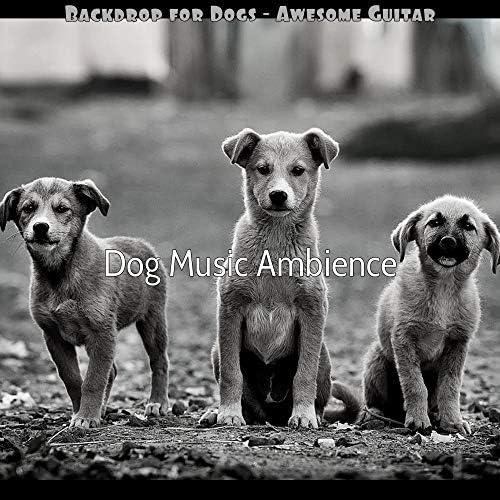 Dog Music Ambience