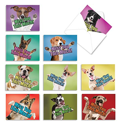 Dog Miss You This Much - 10 Blank Assorted Note Cards with Envelopes (4 x 5.12 Inch) - Boxed Greeting Cards with Dogs, Thinking of You Sentiments - Pet Puppies, Animal Stationery Assortment M6600MYB