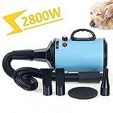Hmpet Secador De Pelo para Mascotas 2800W 3.8HP Alta Velocidad Secador De Cabello para Perros Gatos, Velocidad Ajustable Sin Escalones Secadores De Piel con Calentador, 1 AÑO DE GARANTÍA