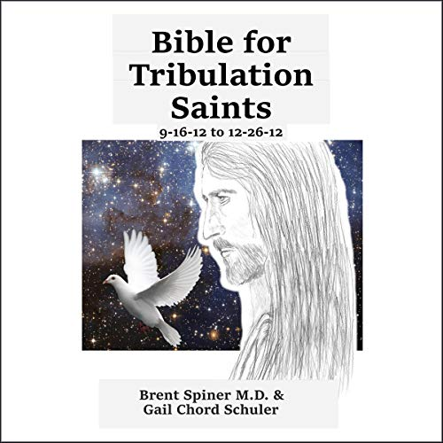 Bible for Tribulation Saints: 9-16-12 to 12-26-12 audiobook cover art