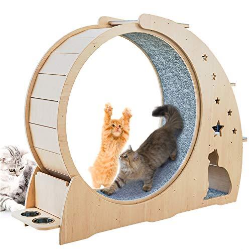 Rueda para Correr para Gatos, Centro De Actividades en interior con Rodillos de gran tamaño