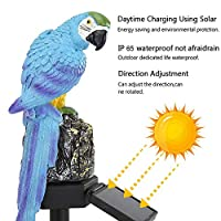 ソーラーライトライトセンサーソーラーライト屋外オウムLEDソーラーパワーライトコートヤードガーデンローンデコランプ防水裏庭ソーラーランプ
