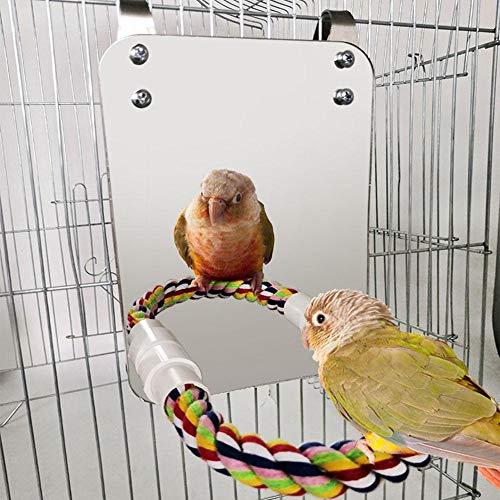 Liteness Juguete para Loro para pájaros, Espejo de pájaro con Percha de Cuerda Resistente a mordeduras para pájaros, Columpio cómodo Perca, para Cockatiel Loros, Loros, Acero Inoxidable