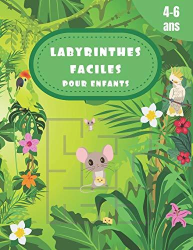 LABYRINTHES FACILES POUR ENFANTS 4 A 6 ANS: Cahier d'activité avec 80 labyrinthes faciles pour enfants avec les solutions à la fin du livre, taille large pour un confort d'utilisation optimale