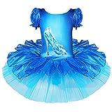 iixpin Vestido de Danza Baile Estampado de Zapatos de Cristal Maillot de Ballet Vestido Princesa Tutú Niñas 2-10 Años Azul 7-8 años