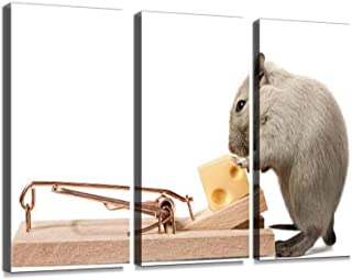 Mouse Eating Cheese of The Trap Print On Canvas Wall Artwork Modern Photography Home Decor Unique Pattern Stretched and Framed 3 Piece