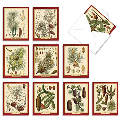 The Best Card Company - Box of 10 Holiday Note Cards - Christmas Cards Assorted, Xmas Trees and Landscapes (4 x 5.12 Inch) - Pining for Christmas M10011XS