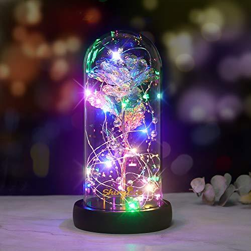 shirylzee Schönheit und das Biest Rose Kit, Ewige Rose im Glas mit LED-Licht Gold Rose Geschenk in Glaskuppel für Hauptdekor-Geburtstags Hochzeits Valentinstag (Bunt)