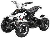 Mini Kinder Elektro Quad ATV Cobra 800 Watt 36 V