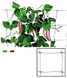Vigor 86015 Rete Plastica P/Rampicanti Rotolo, 50 mt, 150 cm