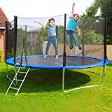 Pikolai 12 FT Large Easy-to-Assemble Trampoline, Recreational Trampoline Set with Premium Jumping Mat Safety Enclosure System Ladder, Perfect for Outdoor Exercises or Games (Blue)