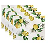 Benson Mills Lemon Cork Placemat, 11.8-inch by 15.75-inch (set of 4), Ivory