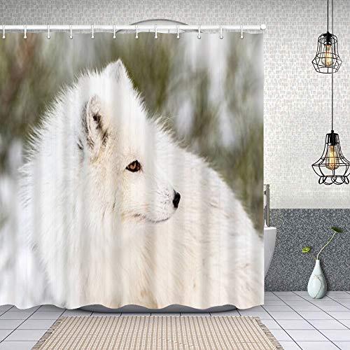 huagu Duschvorhang,Polarfuchs mit Winterfell nach rechts nah Oben mit Schnee und Büschen in der,Waschbar Shower Curtains Wasserdicht und mit 12 Ringe Bad Vorhang 180x180cm