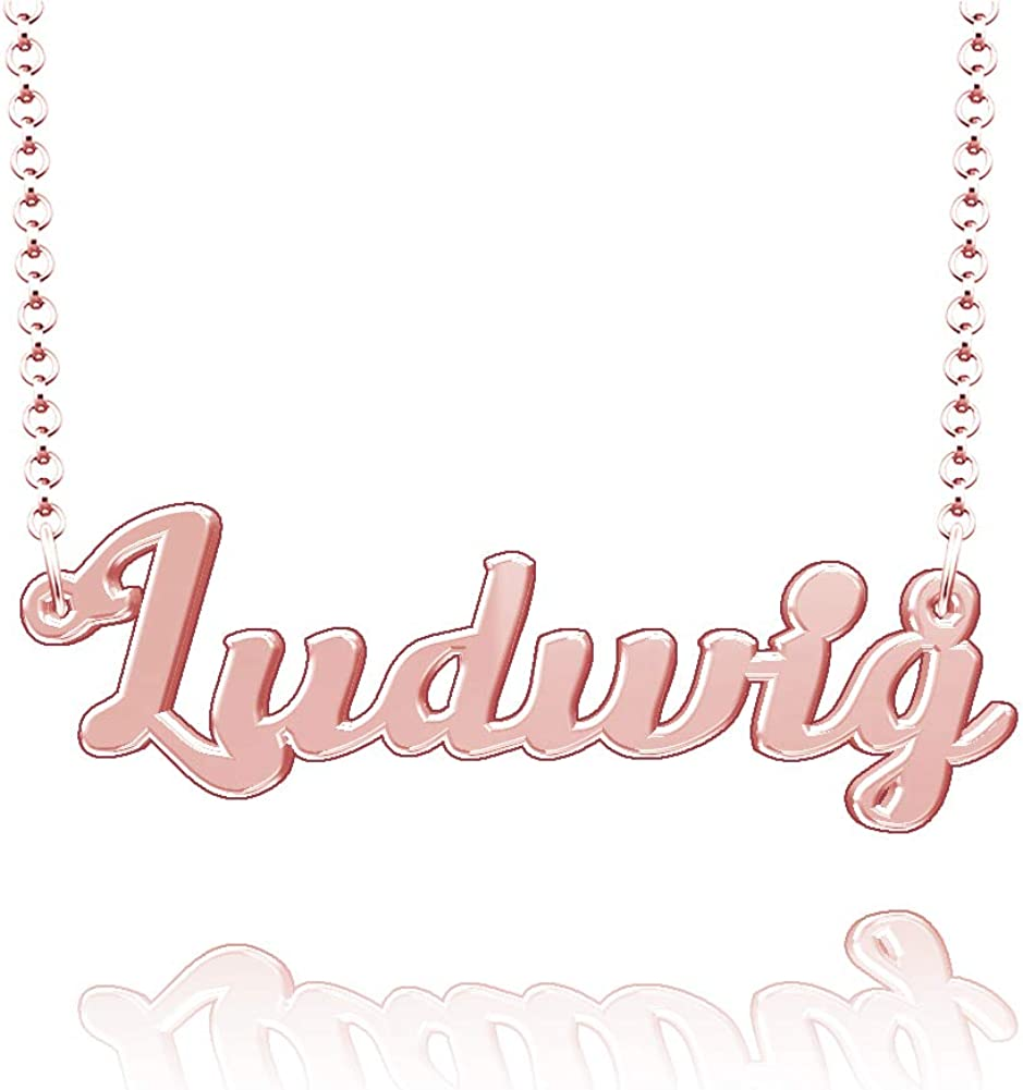 LoEnMe Jewelry Customized Ludwig Name Necklace Stainless Steel Plated Custom Made of Last Name Gift for Family